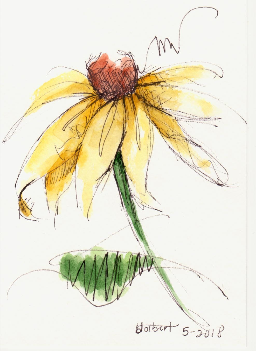 Yellow Cone Flower Brown Center Original Watercolor Art Etsy