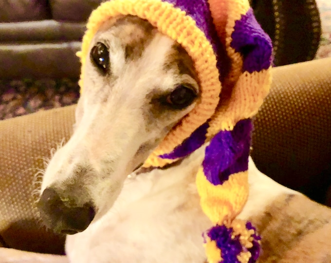 Greyhound hat with snood in Purple & Gold Sport Stripes!