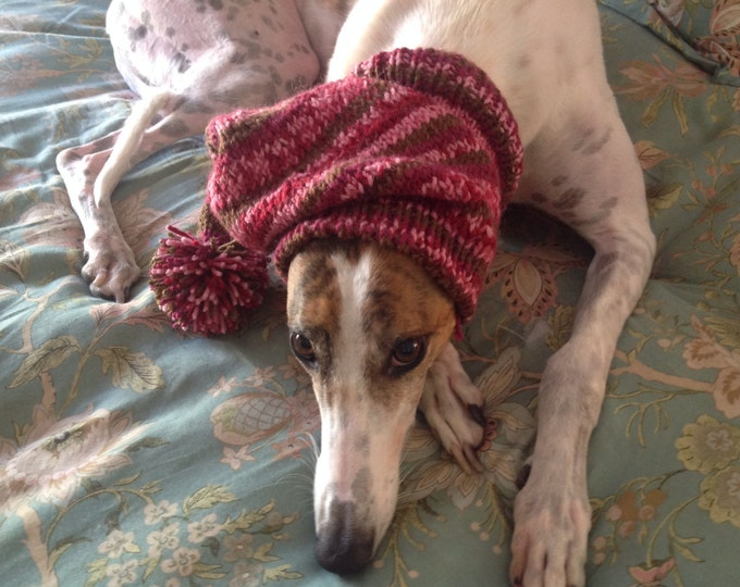 Pointed Hat with Snood for Greyhound or Other Large Sighthound--Wild Aster