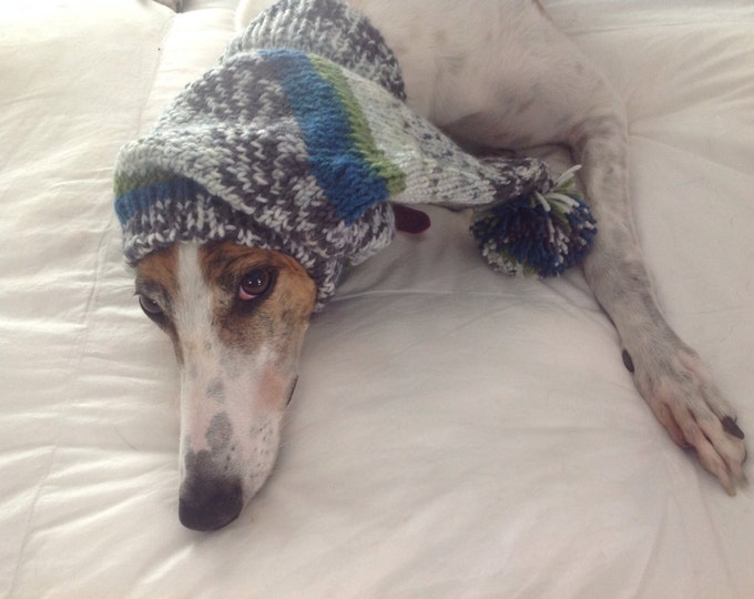 Pointed Hat with Snood for Greyhound or Other Large Sighthound-Alize yarn 4326