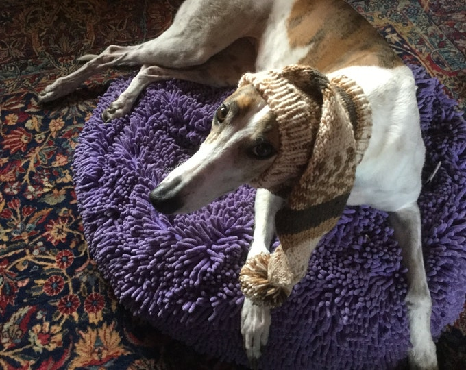 Pointed Hat with Snood for Greyhound or Other Large Sighthound-Alize Yarn 1677