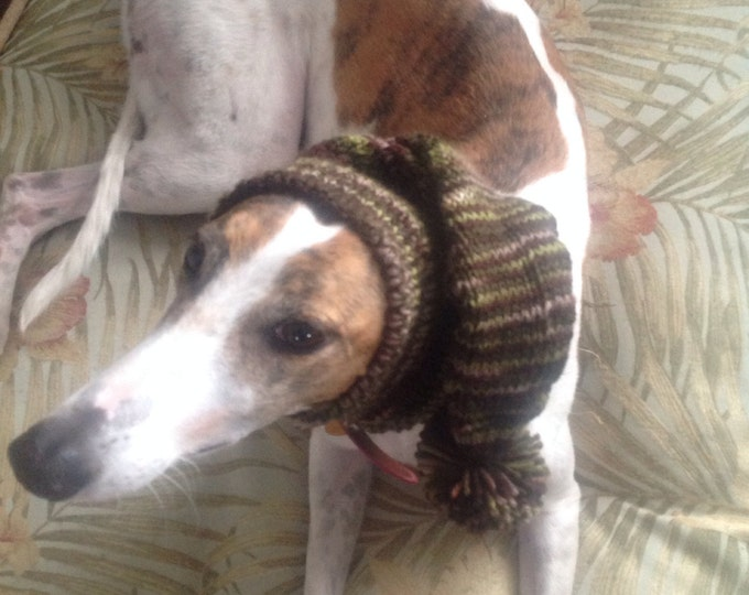 Pointed Hat with Snood for Greyhound - self striping pattern Patons Forest