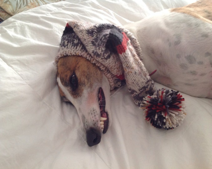 Pointed Hat with Snood for Greyhound self patterning fair isle--Alize yarn 3007