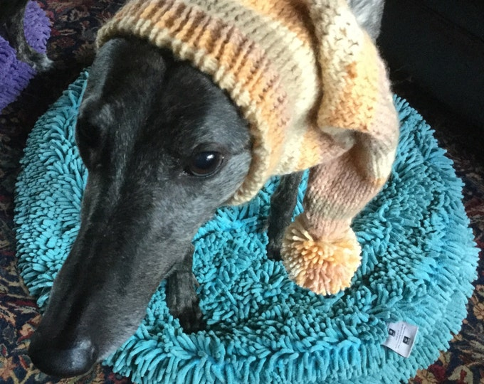 Pointed Hat with Snood for Greyhound - Harvest Stripes 9484