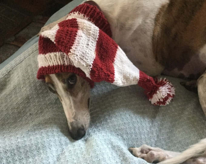 Pointed Hat with Snood for Greyhound in Burgundy & White Sport Stripes