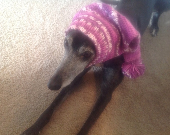 Pointed Hat with Snood for Greyhound or Other Large Sighthound--fair isle pattern Purple Power