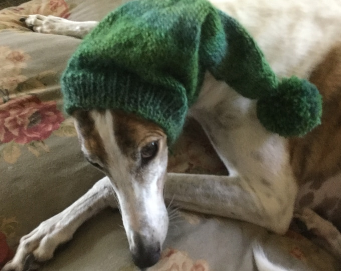 Pointed hat with snood for greyhound -Reef Classic Shades