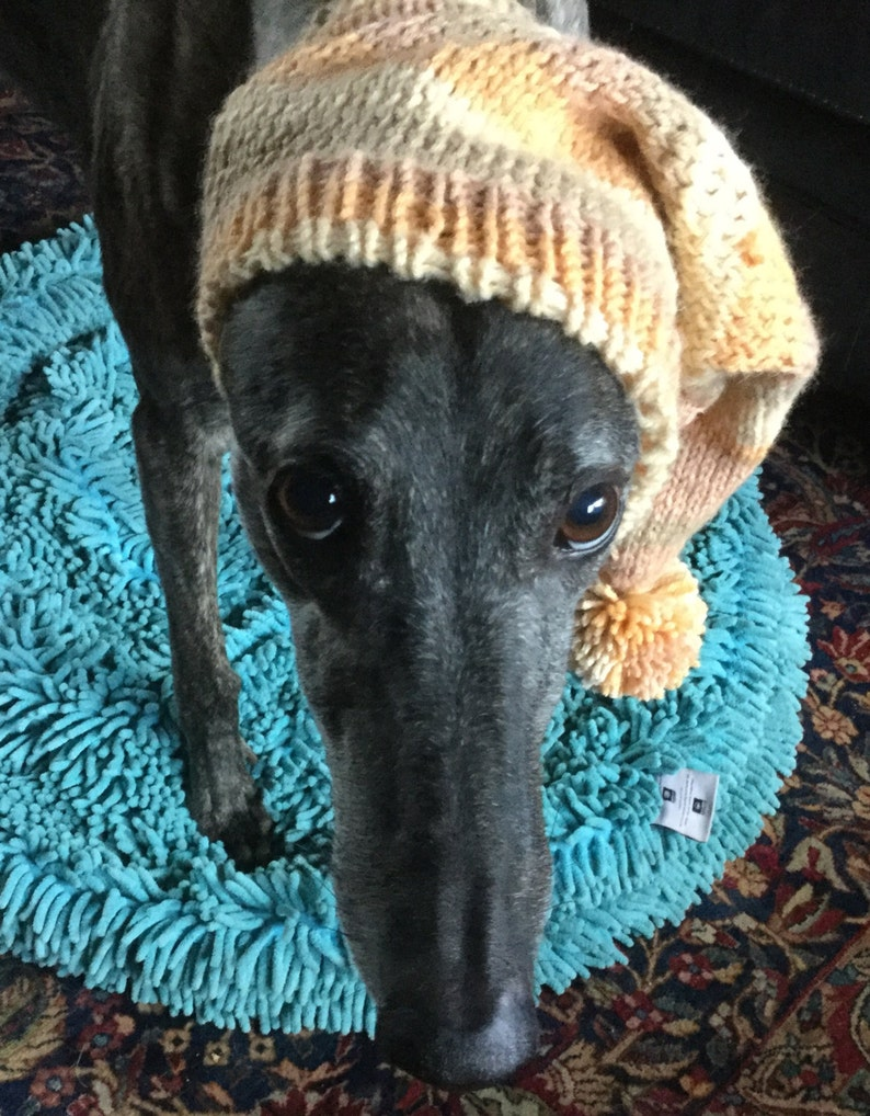 Pointed Hat with Snood for Greyhound Harvest Stripes 9484