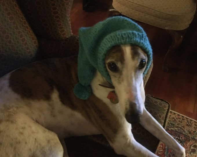 Pointed Hat with Snood for Greyhound --#459 Lagoon