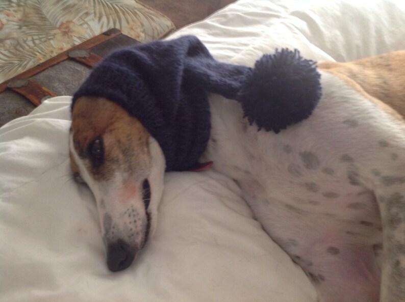 Greyhound hat with snood Blueberry--super soft!