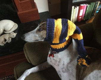 Blue and gold striped team hat