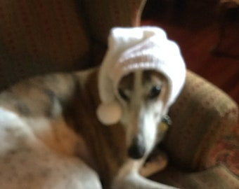 Pointed Hat with Snood for Greyhound --651 White