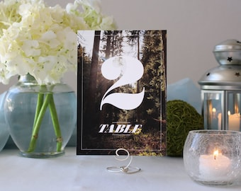 Photograph Beautiful Forest Table Number Nature Romantic Wedding Table Marker