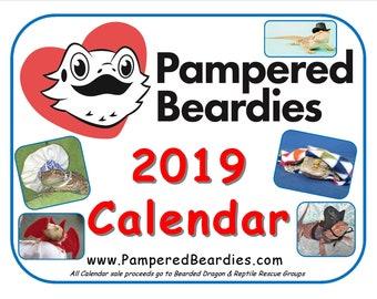 Pampered Beardies