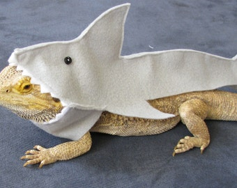 TOP SELLER! Great White Shark Costume for Bearded Dragons! Shown on Discovery's Shark Week!!!