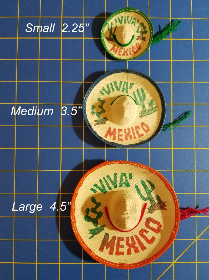 Mexican Fiesta Costume for Bearded Dragons, Reptiles, and Small Animals!  Three Sizes available