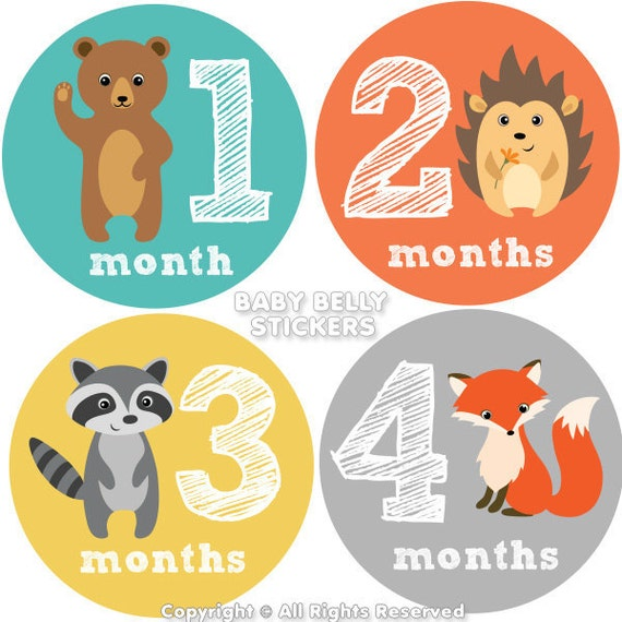 baby month stickers monthly baby stickers monthly milestone etsy