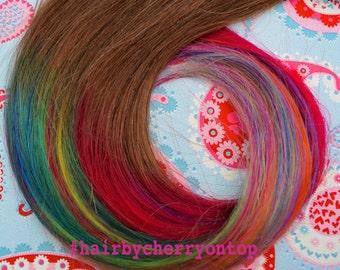 Medium Brown Clip-in Hair Extensions - Rainbow Hair!