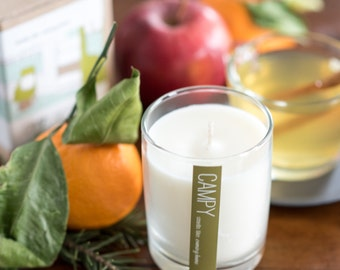 Coming Home (Mulled Apple & Fir) 7oz soy candle / campy candles / housewarming / hostess gift idea / vegan candle / apple pie / fragrance