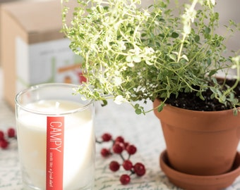 A Fresh Start (Red Currant & Thyme) 7oz soy candle / campy candles / housewarming / hostess gift / vegan candle / fresh scent / fragrance