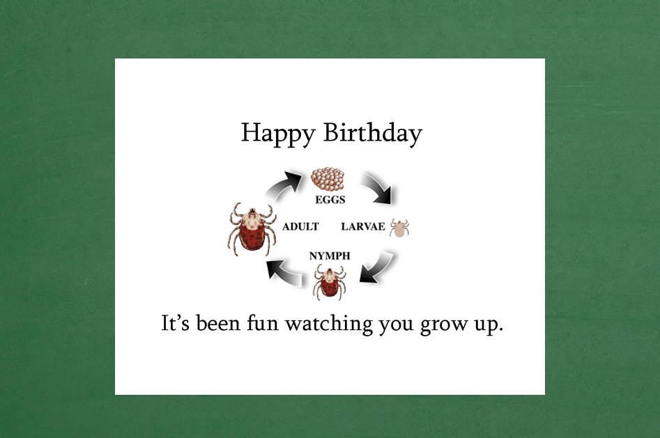 Birthday Card 17th 16th 15th