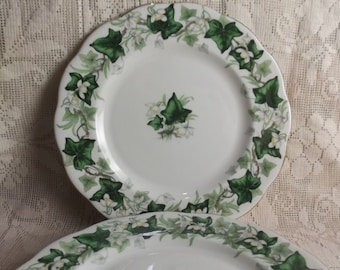 Royal Albert, Ivy Lea pattern - green ivy dinner plate - green plates - fine china plate - ivy - vintage china - bone china - green wedding