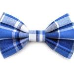 The Blake Bow Tie — Dog Bowtie, Made in Brooklyn, Bowtied, Madras Plaid, Blue, Navy, Summer, Preppy