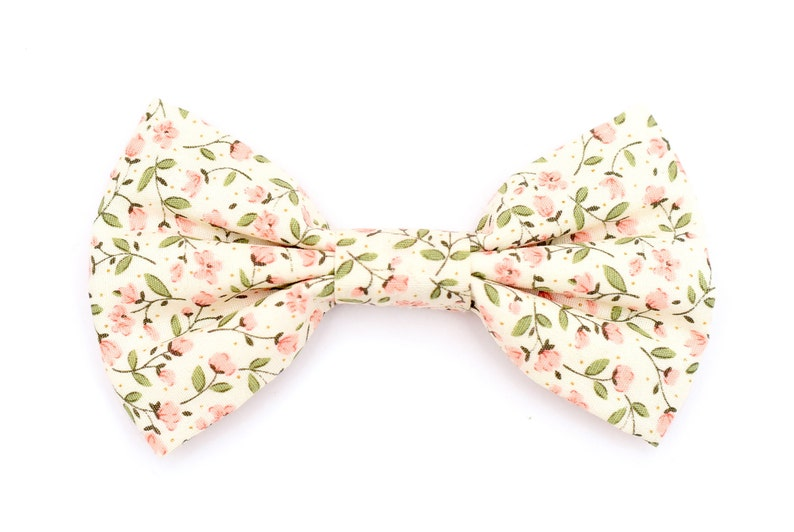 The Glenmore Bow Tie  Dog Bowtie Brooklyn Bowtied Floral image 0