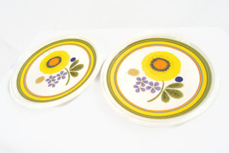 Vintage Pair of Mikasa A La Mode Sunny Days Salad Plates E7301 1970s Lot of 2