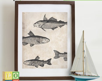 Fish print, vintage Fish, nautical, ocean theme, beach theme, Antique, sailor print, sealife, under the sea, retro item 120