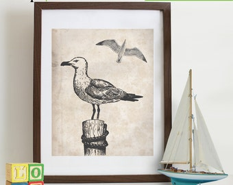 Seagull print, vintage Bird, nautical, ocean theme, beach theme, Antique, sailor print, sealife, under the sea, retro item 118