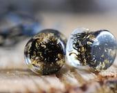 Algae Black Plugs 24k Gold Ear Gauges, Dark Organic Ear Plugs, Clear Resin Tunnels, Gothic Ear Stretchers, Mermaid Sea Terrarium Piercing