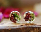 Terrarium Gift, Red Rose, Green Moss Earrings, Stud Earrings, Nature Lover Gift, Botanical Post Earrings, Resin Earrings, Woodland Jewelry