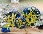 Nature Ear Plugs, Blue Lapis Lazuli Gauges, Tree Lichen Gauges, Stone Gauges, Organic Natural Plugs, Unique plugs