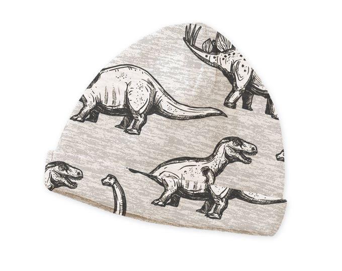SALE! Newborn Baby Boy Hat, Newborn Baby Dinosaur Hat, Baby Hat Girls, Baby Boy Beanies, Baby Girl Beanies Gray Dinosaurs, Tesa Babe