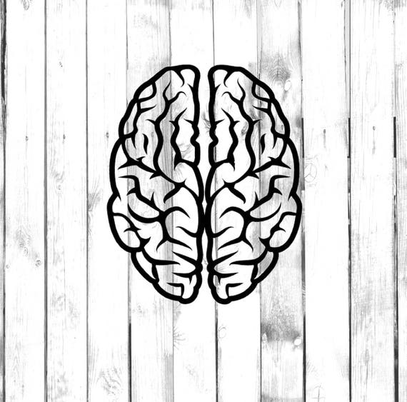 Detailed Brain Di Cut Decal