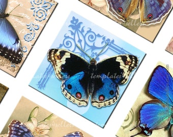 Digital Collage Sheet Blue Butterflies 1 inch square images for jewelry making  Original  Printable 4x6 inch sheet 111