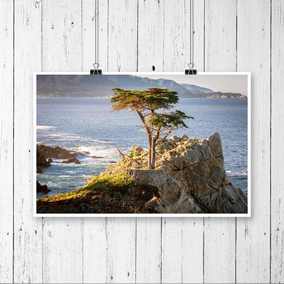 "12/""x18/"" Beach of 17-Mile Drive Black /& White Photo Art Print"