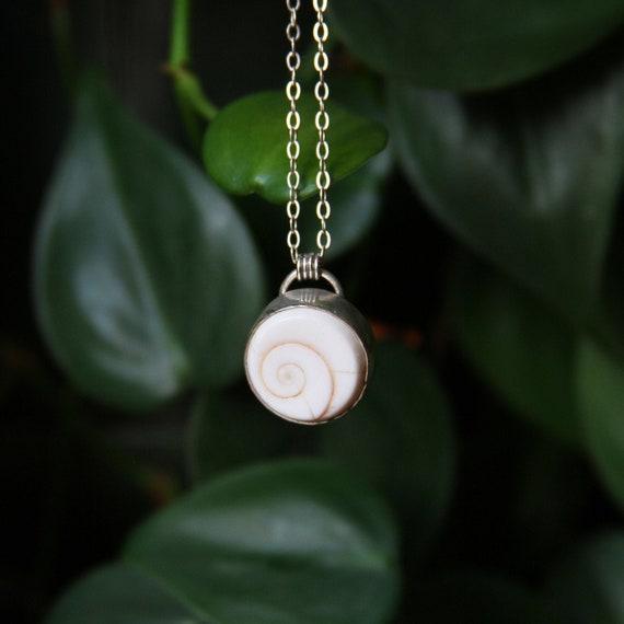 Delicate Shiva Shell Sterling Silver Earrings and Pendant Set