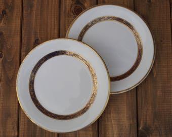 Luncheon Plates (Set of 2) - Royal Doulton - Harlow Pattern
