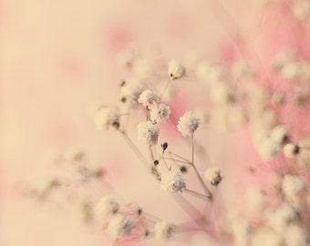 Gypsophila flowers photography, Pink nursery wall art baby's breath print, dreamy pink whimsical fine art print, large wall decor home decor