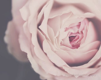 Rose print, pink rose photography, pink rose fine art print, dreamy wall art, gift for her, flower, rose quartz, large wall art, home decor