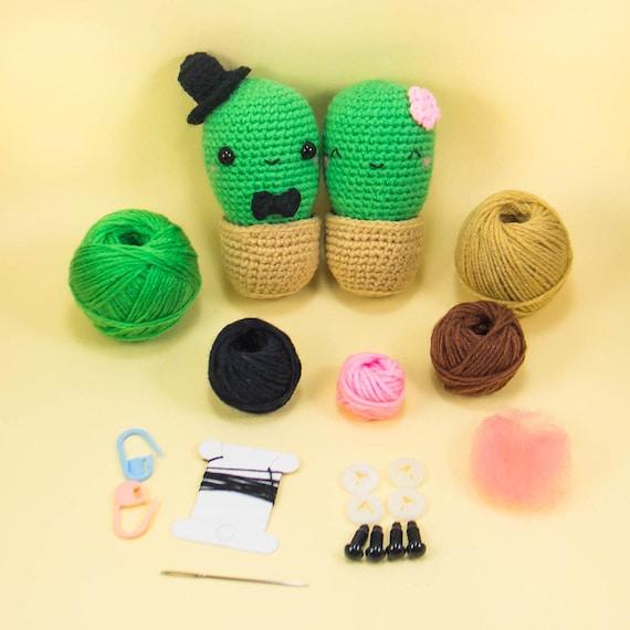 Häkeln Kaktus paar Amigurumi Kit DIY saftig Plüsch Geschenk