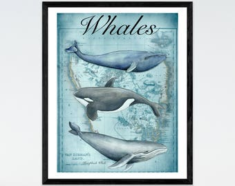 Whale Print Nautical Decor Marine Art Antique Map Gift for Him Man Cave Art Boys Bedroom Wall Decor Nautical Study Decor Watercolor Whales