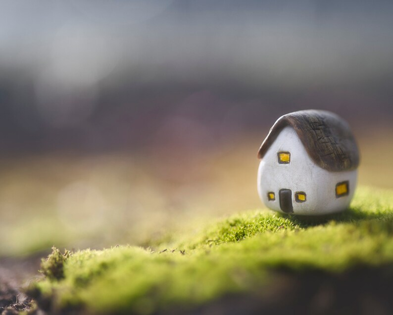 Whimsical Art, Miniature Photography, Cute Tiny House Art Print
