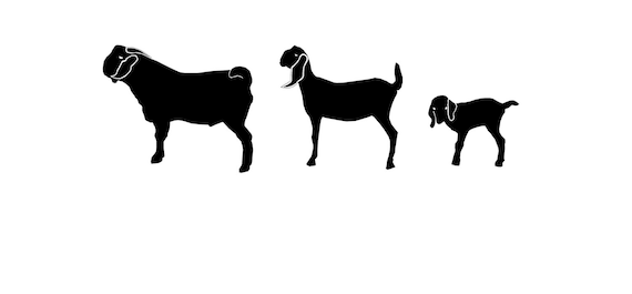 Nubian goat family decal set