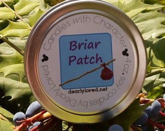 BRIAR PATCH - Disney Scented   Candles with Character - 4 oz.   Splash Mountain   Soy Wax Candle   Hand Poured   Wedding Favors   Gift
