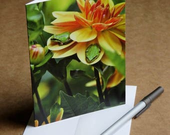 Little Frogs blank note card or greeting card