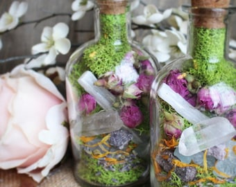 Optimism and Joy Healing Herb and Crystal Jar Terrarium Jar Gift for Her Raw Crystal Healing Crystals and Stones Bohemian Decor Girlfriend