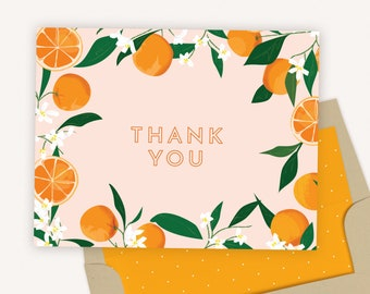 Thank You Card Set of 10 with Envelopes   Orange Citrus Thank You Cards   0112, 0113, 0114